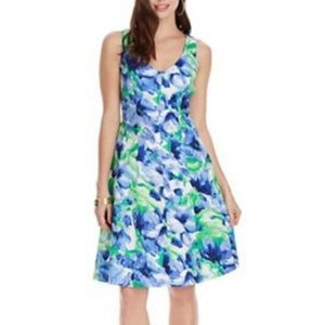 Chaps NWT blue & green floral fit & flare dress 8